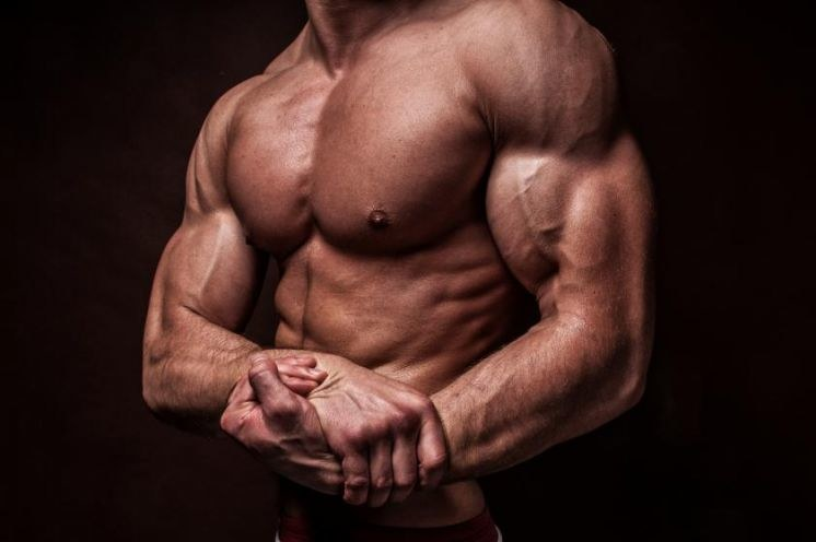 Protein Makes For Bigger And Better Muscles