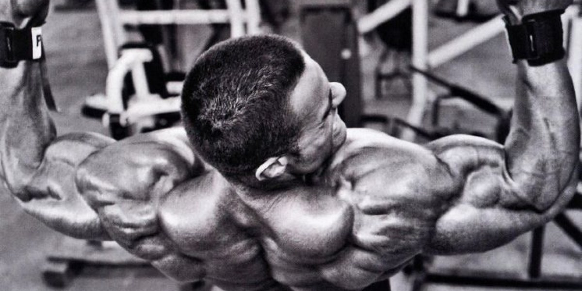 Bodybuilding Tips Every Athlete Should Know
